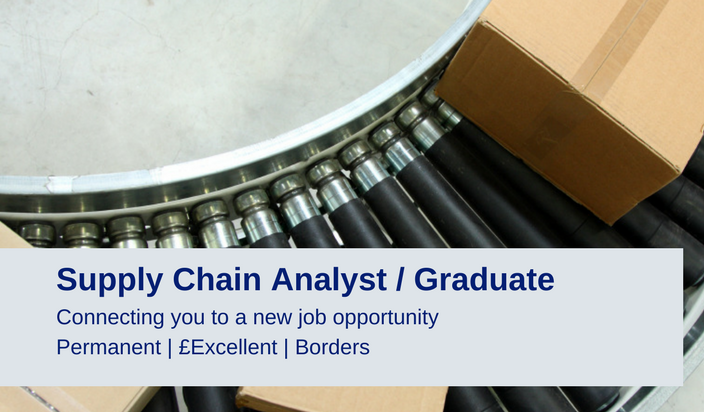 Supply Chain Analyst